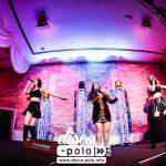 Festival Disco Polo Holandia 2017 Boys, Weekend, Top Girls, Spiżowi Mocni (50)